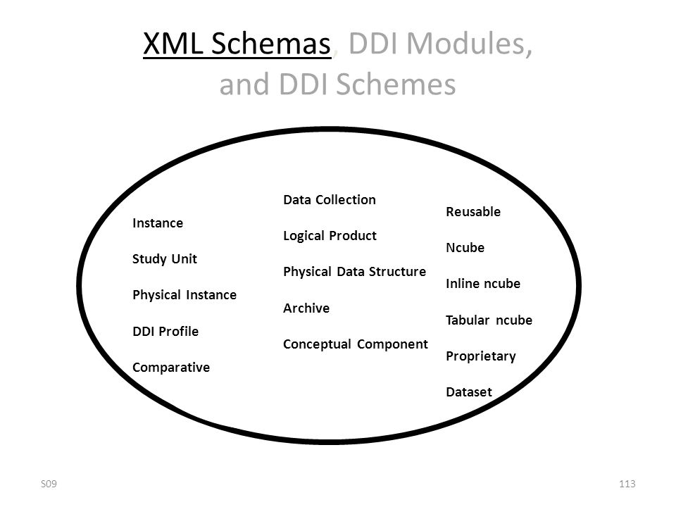 XML Schemas, DDI Modules, and DDI Schemes Instance Study Unit Physical Instance DDI Profile Comparative Data Collection Logical Product Physical Data Structure Archive Conceptual Component Reusable Ncube Inline ncube Tabular ncube Proprietary Dataset S09113