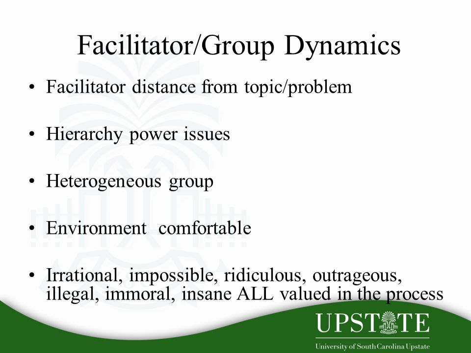 Facilitator/Group Dynamics Facilitator distance from topic/problem Hierarchy power issues Heterogeneous group Environment comfortable Irrational, impossible, ridiculous, outrageous, illegal, immoral, insane ALL valued in the process