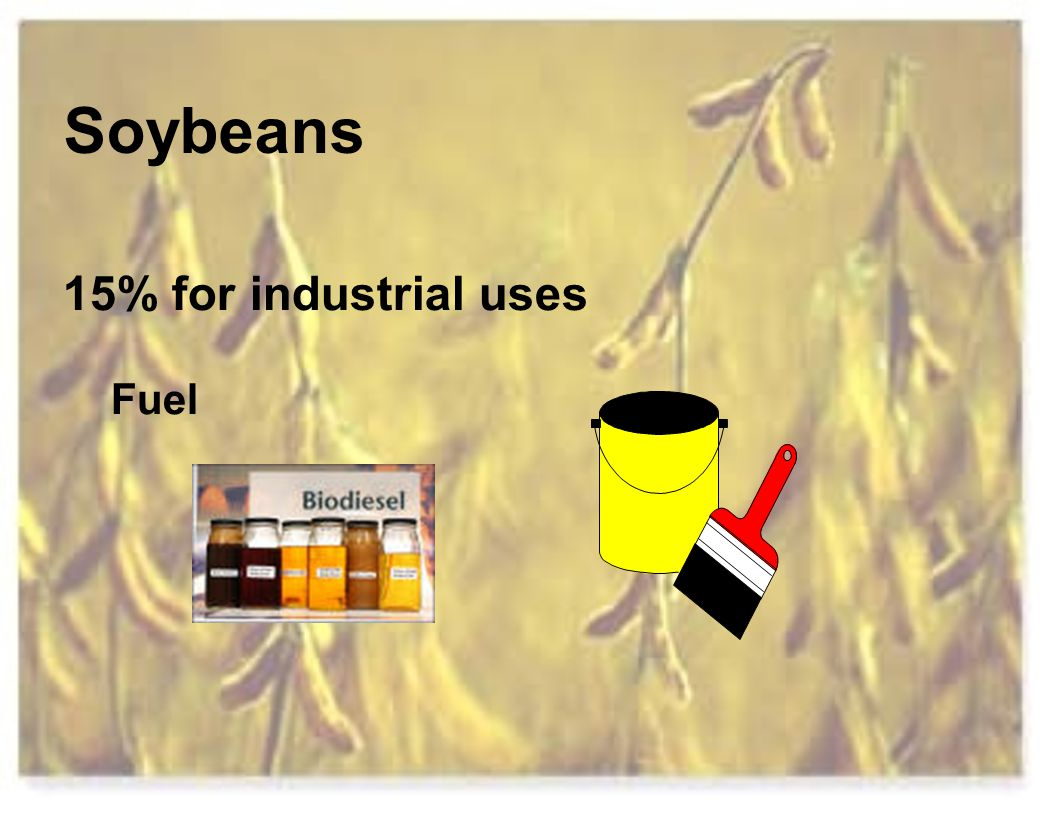 Soybeans 15% for industrial uses Fuel