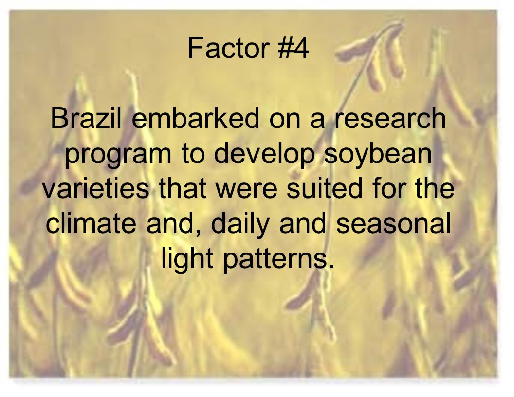 Factor #4 Brazil embarked on a research program to develop soybean varieties that were suited for the climate and, daily and seasonal light patterns.