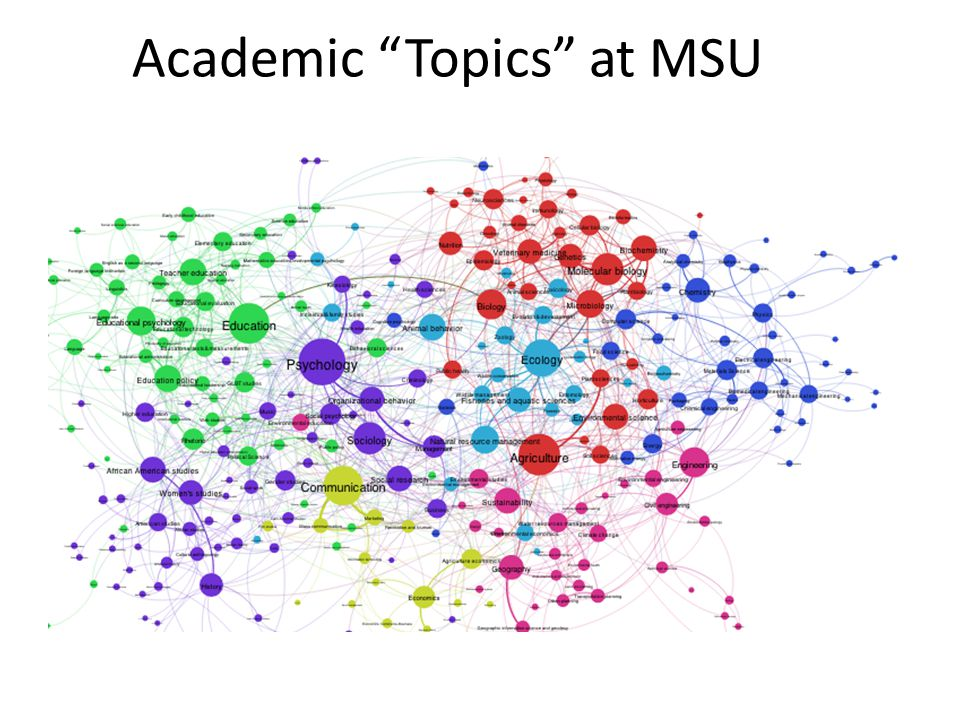 Academic Topics at MSU
