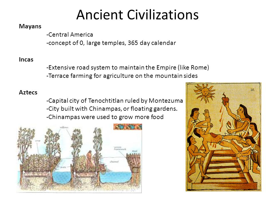 Ancient Civilizations Mayans -Central America -concept of 0, large temples, 365 day calendar Incas -Extensive road system to maintain the Empire (like Rome) -Terrace farming for agriculture on the mountain sides Aztecs -Capital city of Tenochtitlan ruled by Montezuma -City built with Chinampas, or floating gardens.