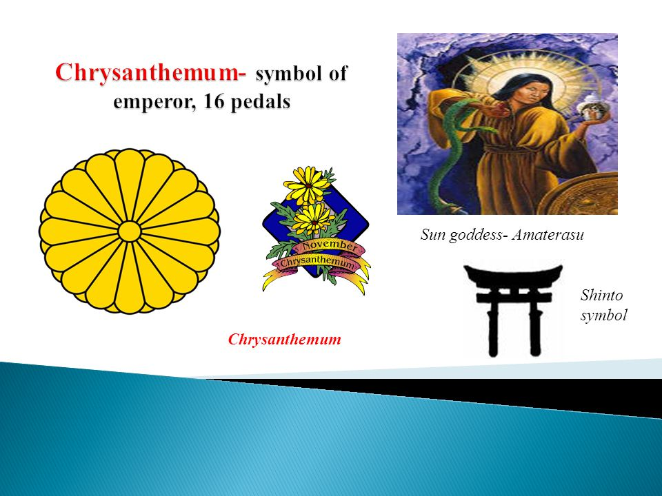 Sun goddess- Amaterasu Shinto symbol Chrysanthemum