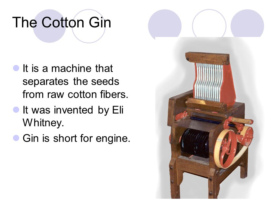 The Effects of the Cotton Gin Profit per pound of cotton skyrocketed, and with it the amount of cotton planted for harvest.