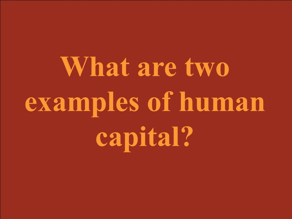 What are two examples of human capital