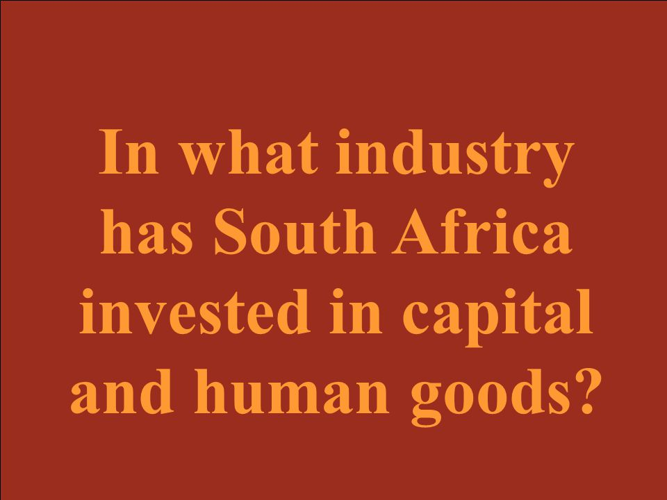 In what industry has South Africa invested in capital and human goods