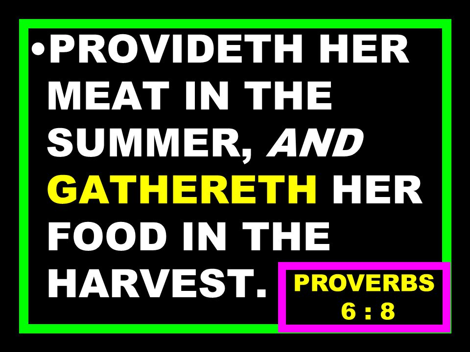 WHICH HAVING NO GUIDE, OVERSEER, OR RULER, PROVERBS 6 : 7