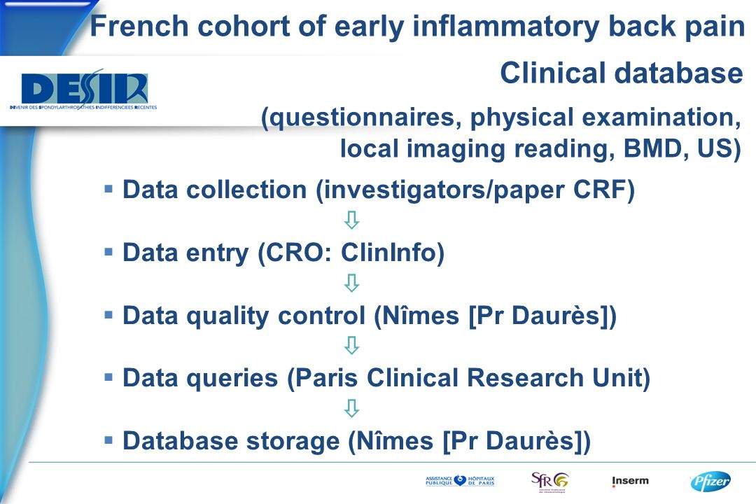 French cohort of early inflammatory back pain Clinical database  Data collection (investigators/paper CRF)   Data entry (CRO: ClinInfo)   Data qu