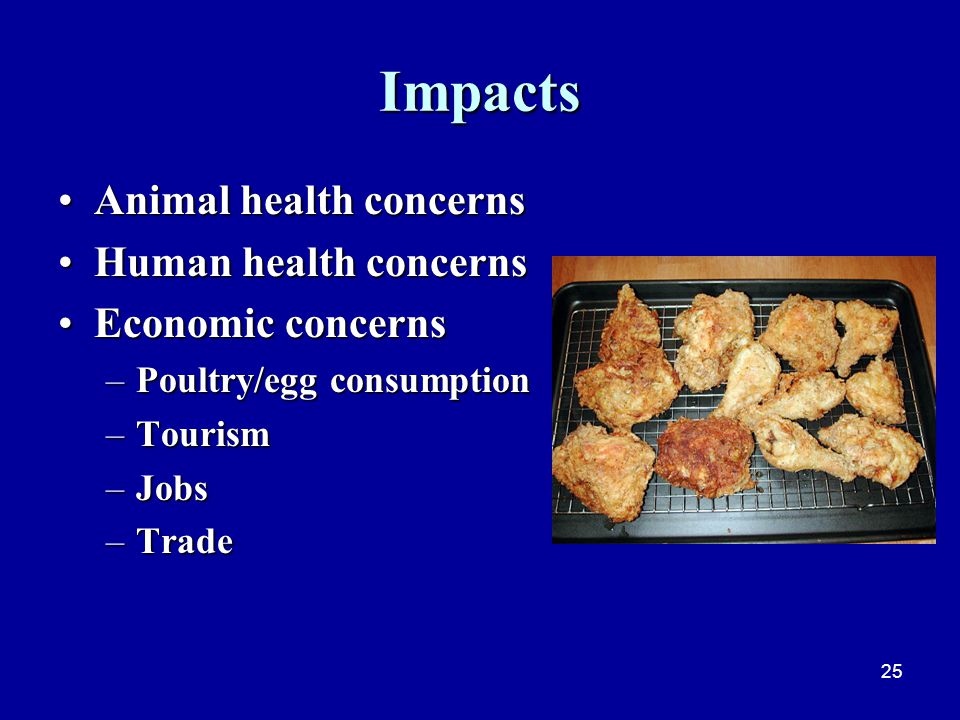 25 Impacts Animal health concernsAnimal health concerns Human health concernsHuman health concerns Economic concernsEconomic concerns –Poultry/egg consumption –Tourism –Jobs –Trade