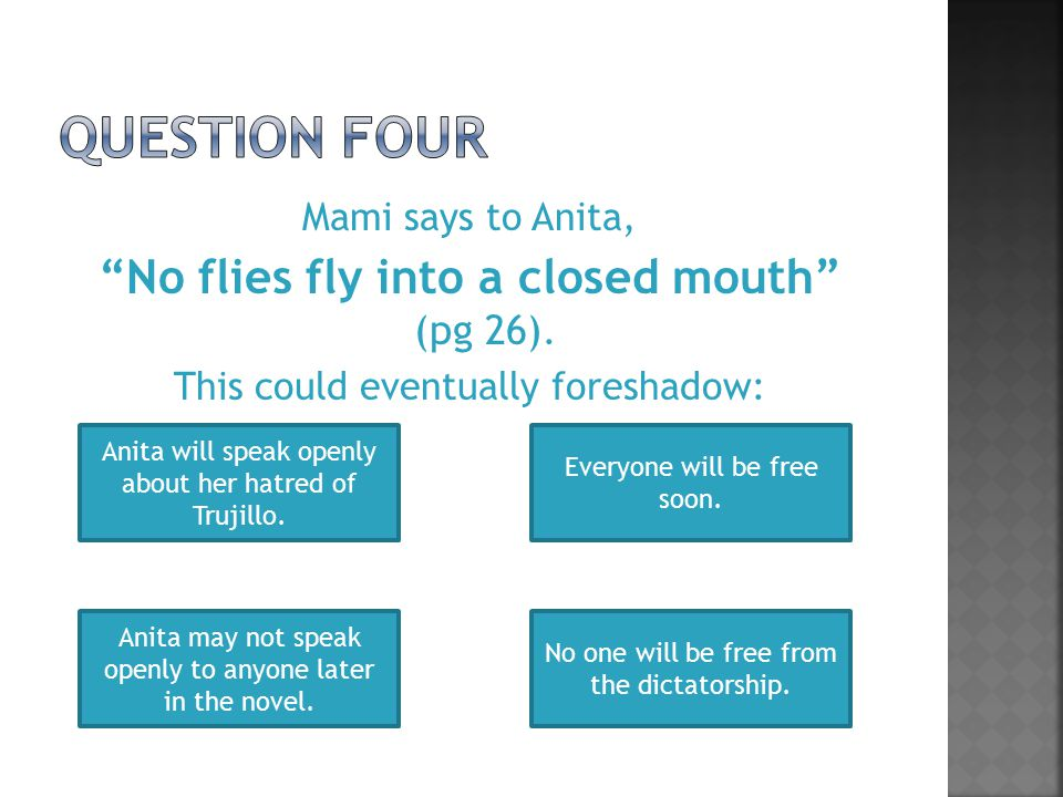 Mami says to Anita, No flies fly into a closed mouth (pg 26).