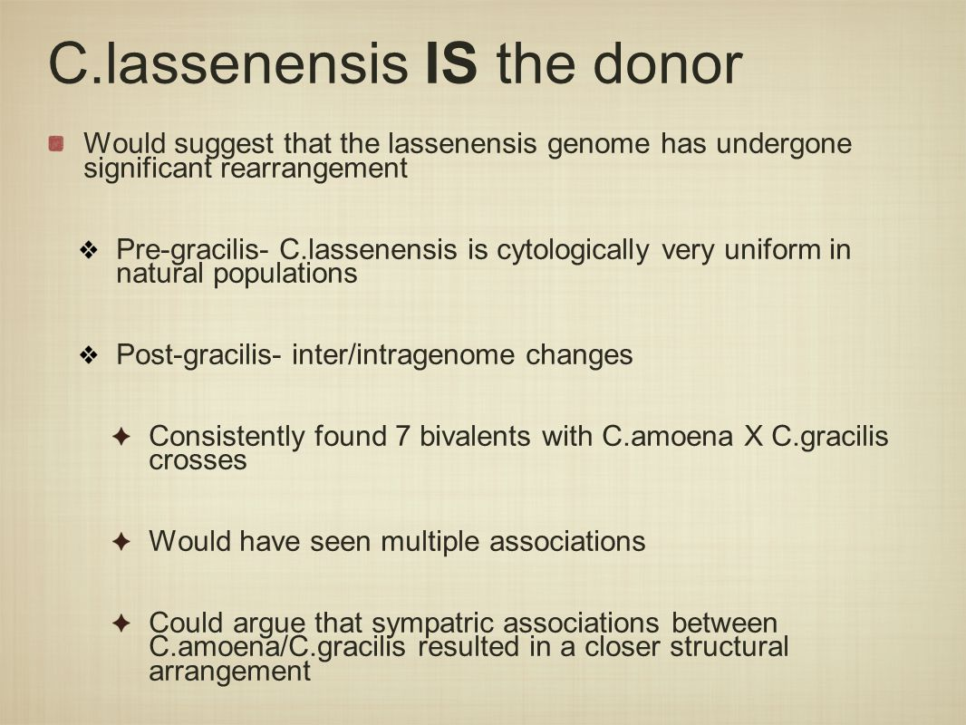 C.lassenensis IS the donor Would suggest that the lassenensis genome has undergone significant rearrangement Pre-gracilis- C.lassenensis is cytologically very uniform in natural populations Post-gracilis- inter/intragenome changes Consistently found 7 bivalents with C.amoena X C.gracilis crosses Would have seen multiple associations Could argue that sympatric associations between C.amoena/C.gracilis resulted in a closer structural arrangement