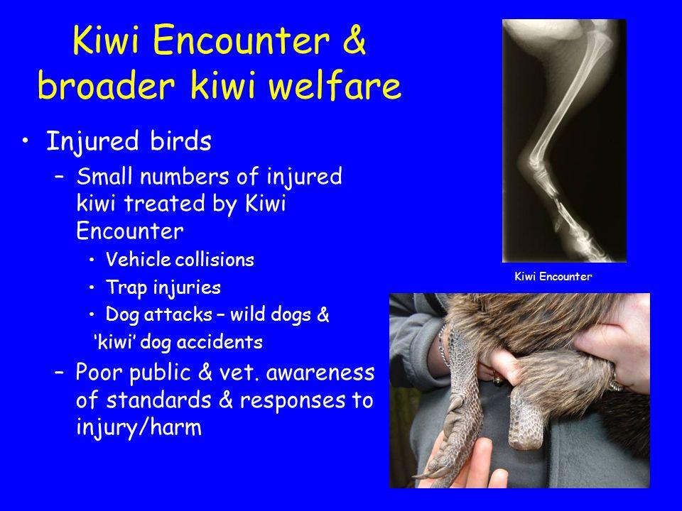 Kiwi Encounter & broader kiwi welfare Injured birds –Small numbers of injured kiwi treated by Kiwi Encounter Vehicle collisions Trap injuries Dog attacks – wild dogs & 'kiwi' dog accidents –Poor public & vet.