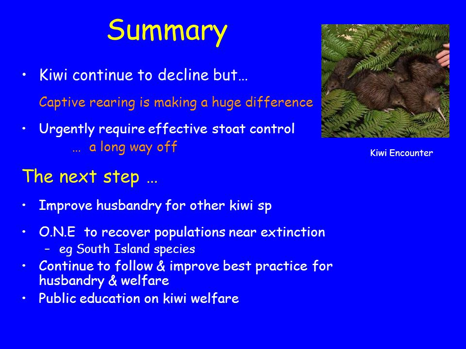 Summary Kiwi continue to decline but… Captive rearing is making a huge difference Urgently require effective stoat control … a long way off The next s