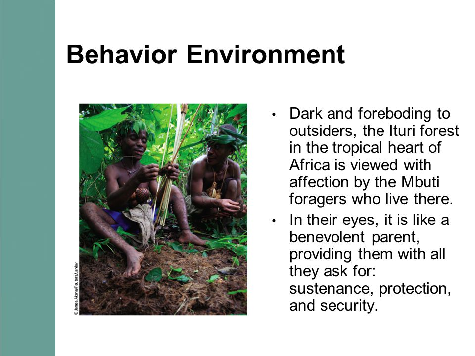 Behavior Environment Dark and foreboding to outsiders, the Ituri forest in the tropical heart of Africa is viewed with affection by the Mbuti foragers