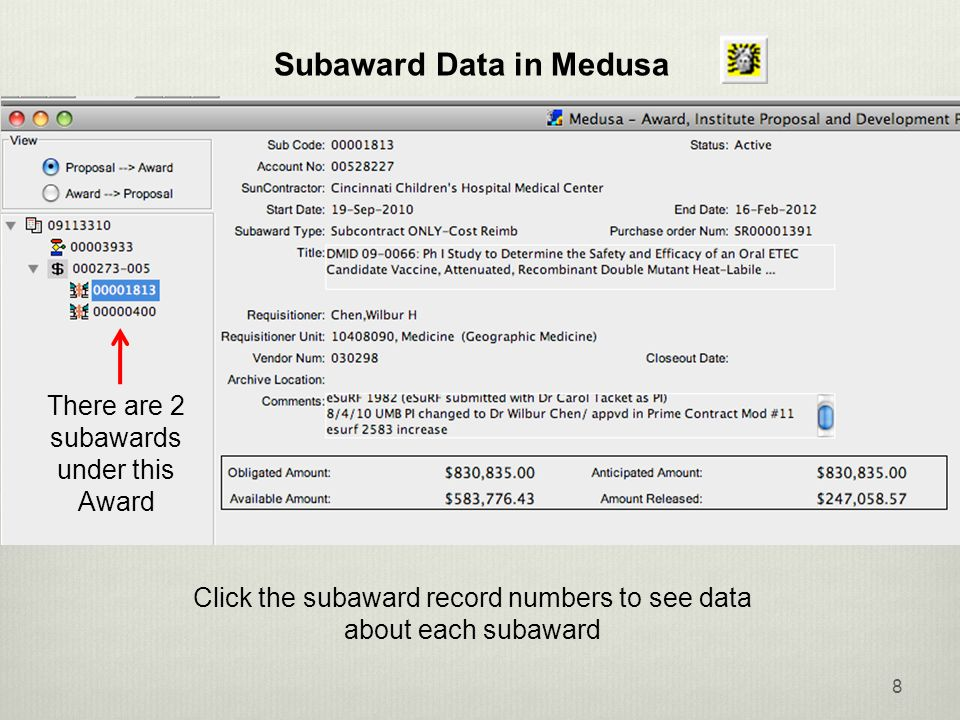 8 Click the subaward record numbers to see data about each subaward There are 2 subawards under this Award Subaward Data in Medusa