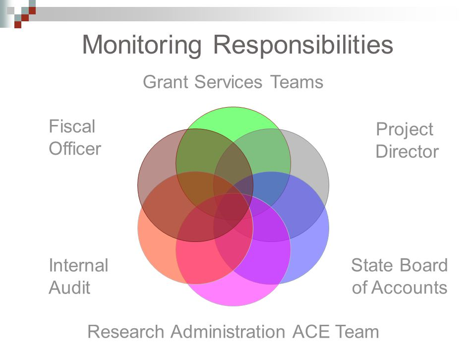 Grant Services Teams State Board of Accounts Research Administration ACE Team Internal Audit Fiscal Officer Monitoring Responsibilities Project Director