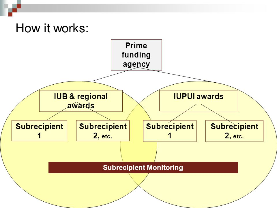 How it works: Prime funding agency IUB & regional awards IUPUI awards Subrecipient 1 Subrecipient 2, etc.
