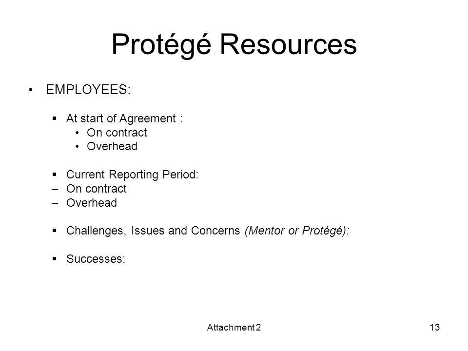 Protégé Resources EMPLOYEES:  At start of Agreement : On contract Overhead  Current Reporting Period: –On contract –Overhead  Challenges, Issues and Concerns (Mentor or Protégé):  Successes: Attachment 213