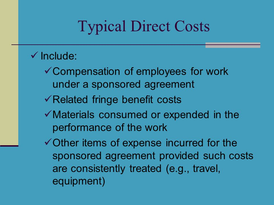Other Direct Costs Publication Costs Consultant Services Raises a red flag Letter of commitment Computer Services Subcontracts Raises a red flag Entire sub-proposal Institutional letter of commitment