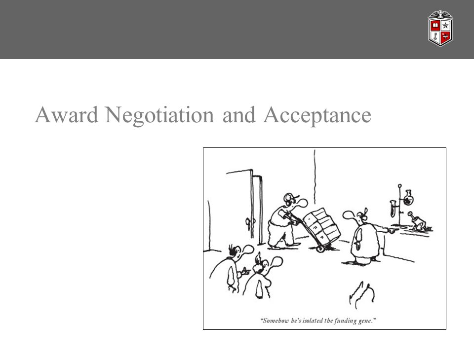 Award Negotiation and Acceptance