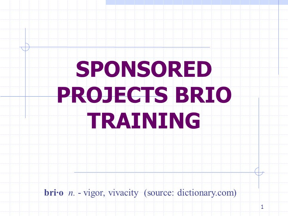 1 SPONSORED PROJECTS BRIO TRAINING bri·o n. - vigor, vivacity (source: dictionary.com)