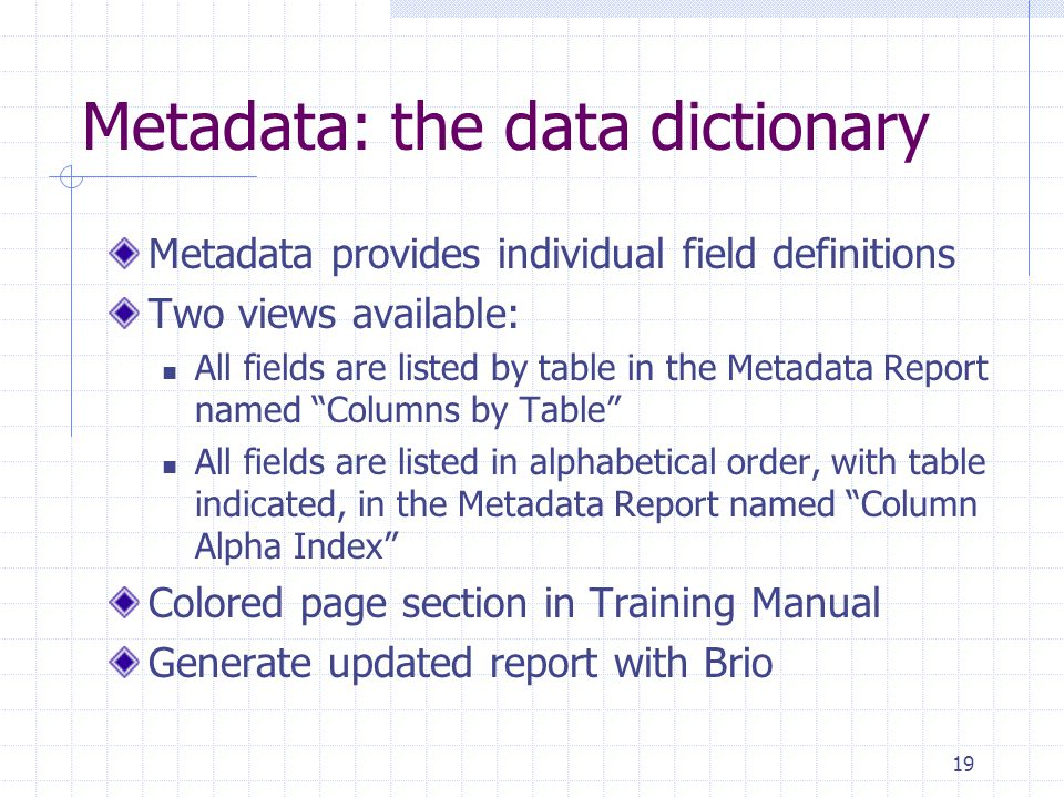 19 Metadata: the data dictionary Metadata provides individual field definitions Two views available: All fields are listed by table in the Metadata Report named Columns by Table All fields are listed in alphabetical order, with table indicated, in the Metadata Report named Column Alpha Index Colored page section in Training Manual Generate updated report with Brio