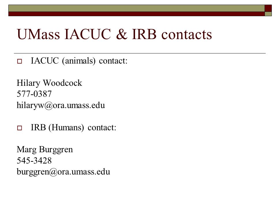 UMass IACUC & IRB contacts  IACUC (animals) contact: Hilary Woodcock 577-0387 hilaryw@ora.umass.edu  IRB (Humans) contact: Marg Burggren 545-3428 burggren@ora.umass.edu