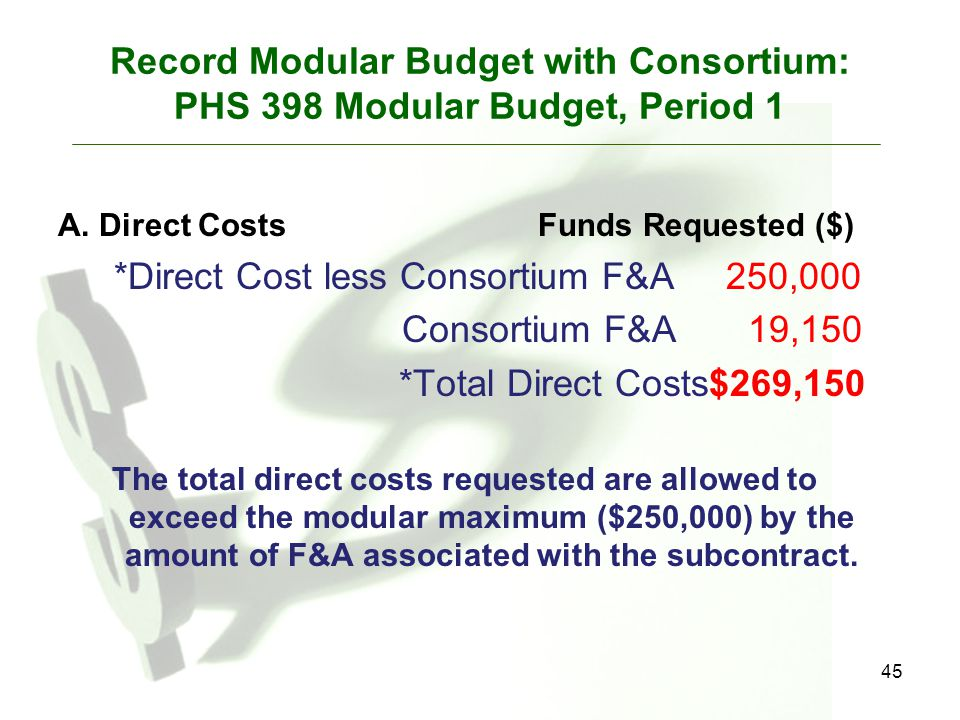 45 Record Modular Budget with Consortium: PHS 398 Modular Budget, Period 1 A. Direct CostsFunds Requested ($) *Direct Cost less Consortium F&A 250,000