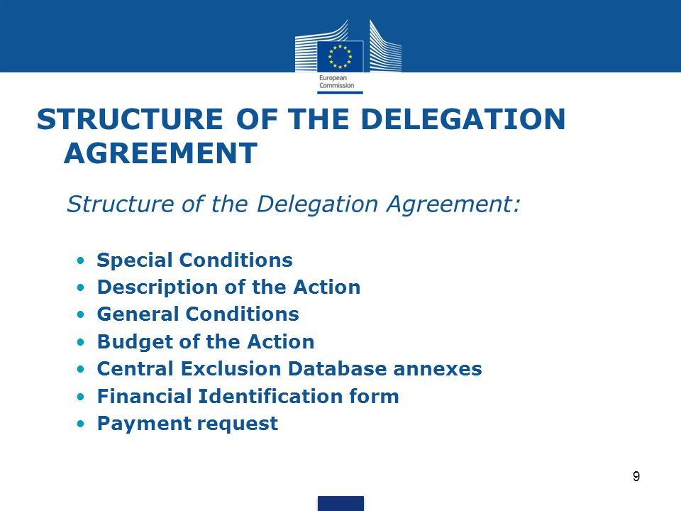 STRUCTURE OF THE DELEGATION AGREEMENT Structure of the Delegation Agreement: Special Conditions Description of the Action General Conditions Budget of
