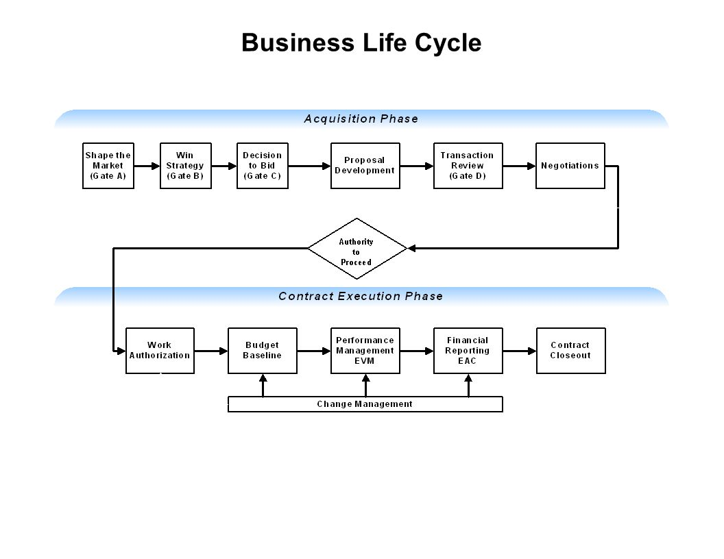 Capture Team Success Business Life Cycle