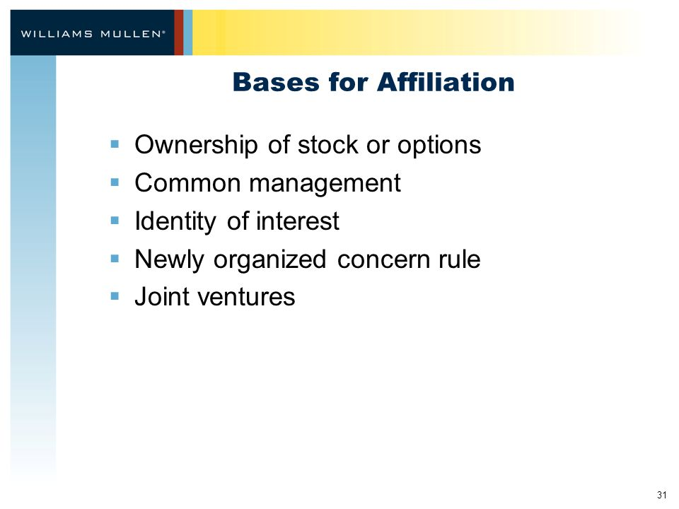 31 Bases for Affiliation  Ownership of stock or options  Common management  Identity of interest  Newly organized concern rule  Joint ventures
