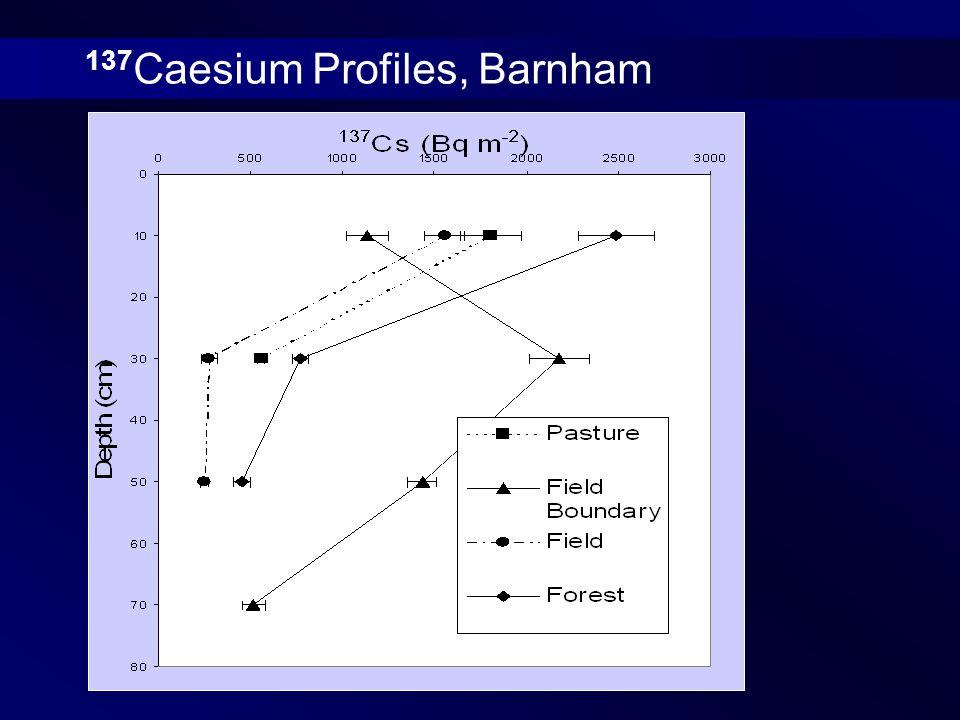137 Caesium Profiles, Barnham