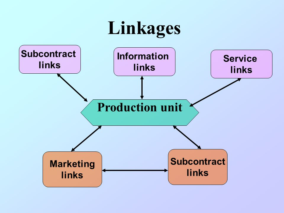 Linkages Production unit Subcontract links Information links Service links Marketing links Subcontract links