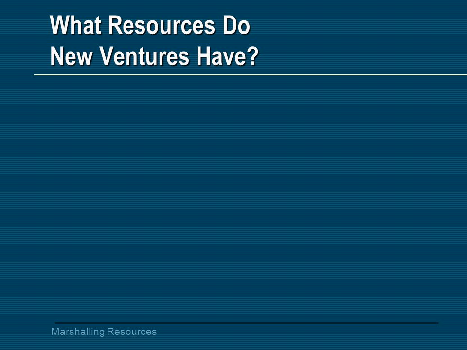 What Resources Do New Ventures Have