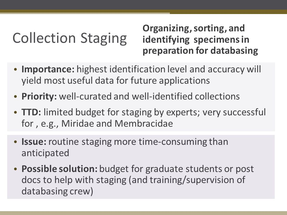 Collection Staging Organizing, sorting, and identifying specimens in preparation for databasing Importance: highest identification level and accuracy