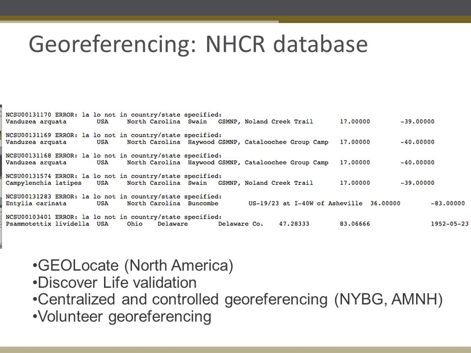 Georeferencing: NHCR database GEOLocate (North America) Discover Life validation Centralized and controlled georeferencing (NYBG, AMNH) Volunteer georeferencing