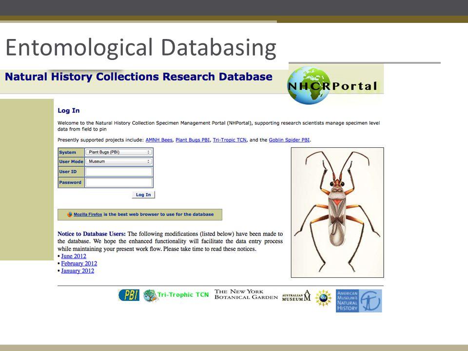 Entomological Databasing