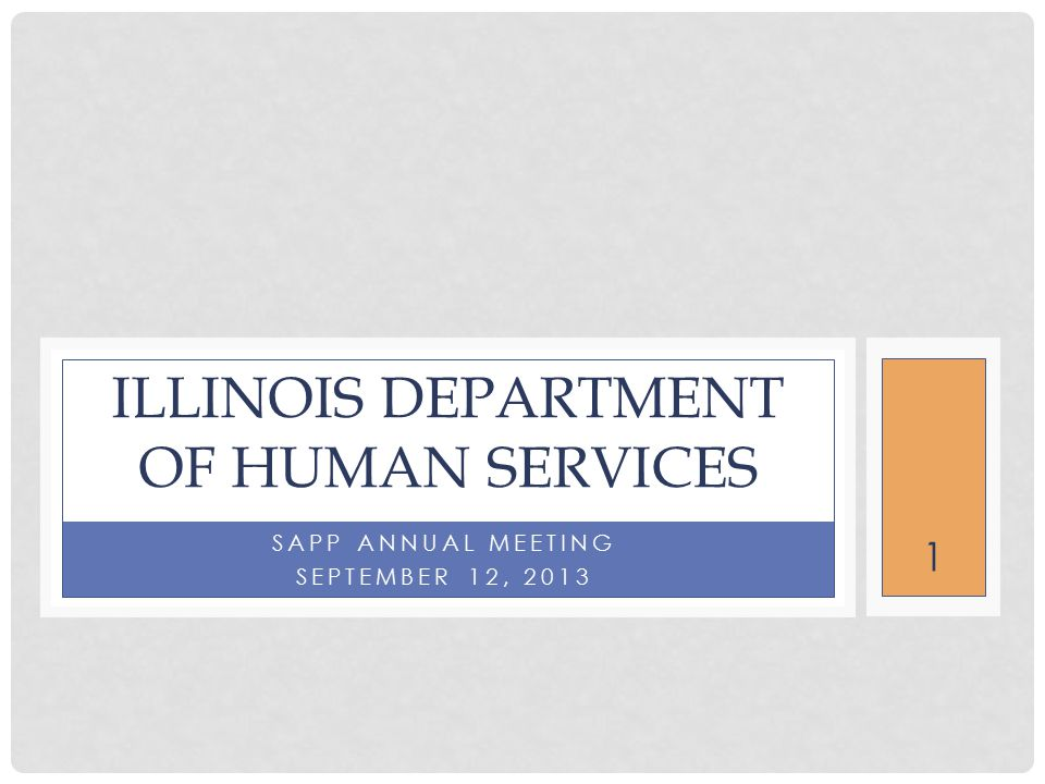 1 SAPP ANNUAL MEETING SEPTEMBER 12, 2013 ILLINOIS DEPARTMENT OF HUMAN SERVICES