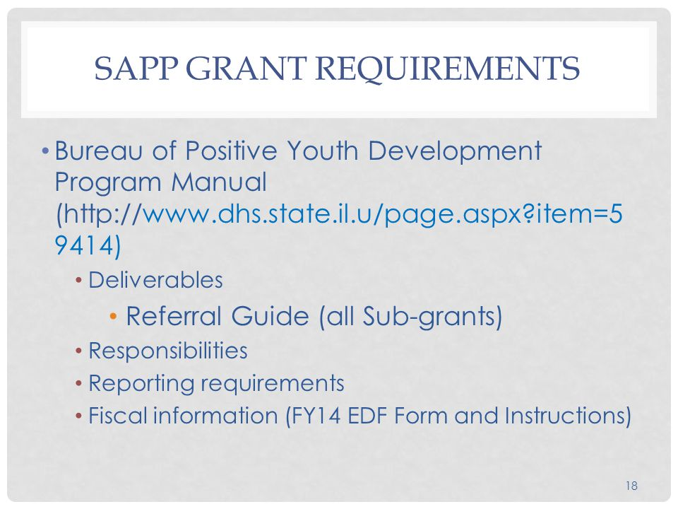 18 SAPP GRANT REQUIREMENTS Bureau of Positive Youth Development Program Manual (http://www.dhs.state.il.u/page.aspx item=5 9414) Deliverables Referral Guide (all Sub-grants) Responsibilities Reporting requirements Fiscal information (FY14 EDF Form and Instructions)