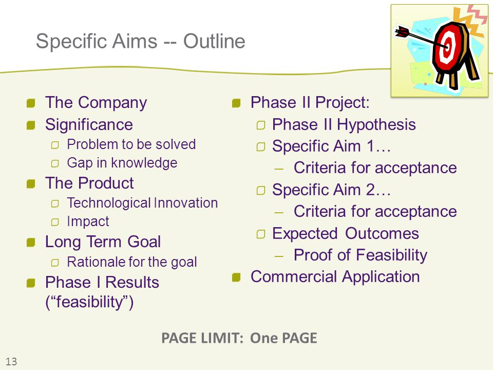 Specific Aims -- Outline The Company Significance Problem to be solved Gap in knowledge The Product Technological Innovation Impact Long Term Goal Rat