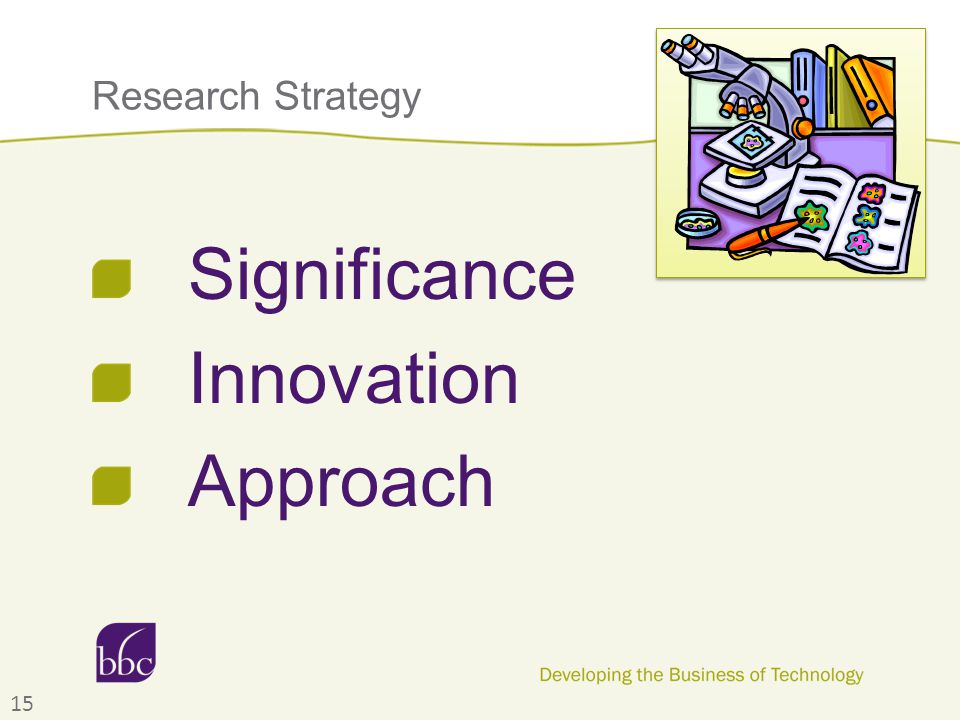 Research Strategy Significance Innovation Approach 15