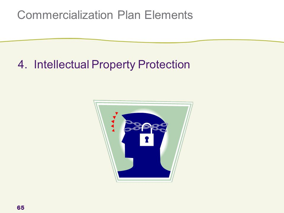 Commercialization Plan Elements 65 4. Intellectual Property Protection