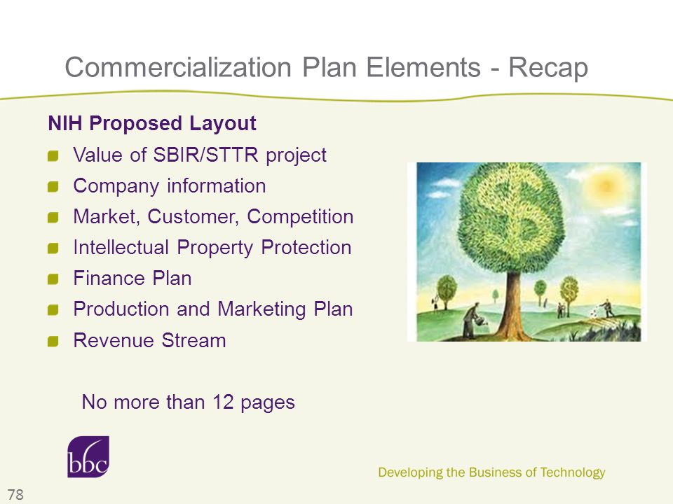 Commercialization Plan Elements - Recap NIH Proposed Layout Value of SBIR/STTR project Company information Market, Customer, Competition Intellectual Property Protection Finance Plan Production and Marketing Plan Revenue Stream No more than 12 pages 78