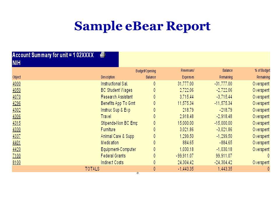 Sample eBear Report 8