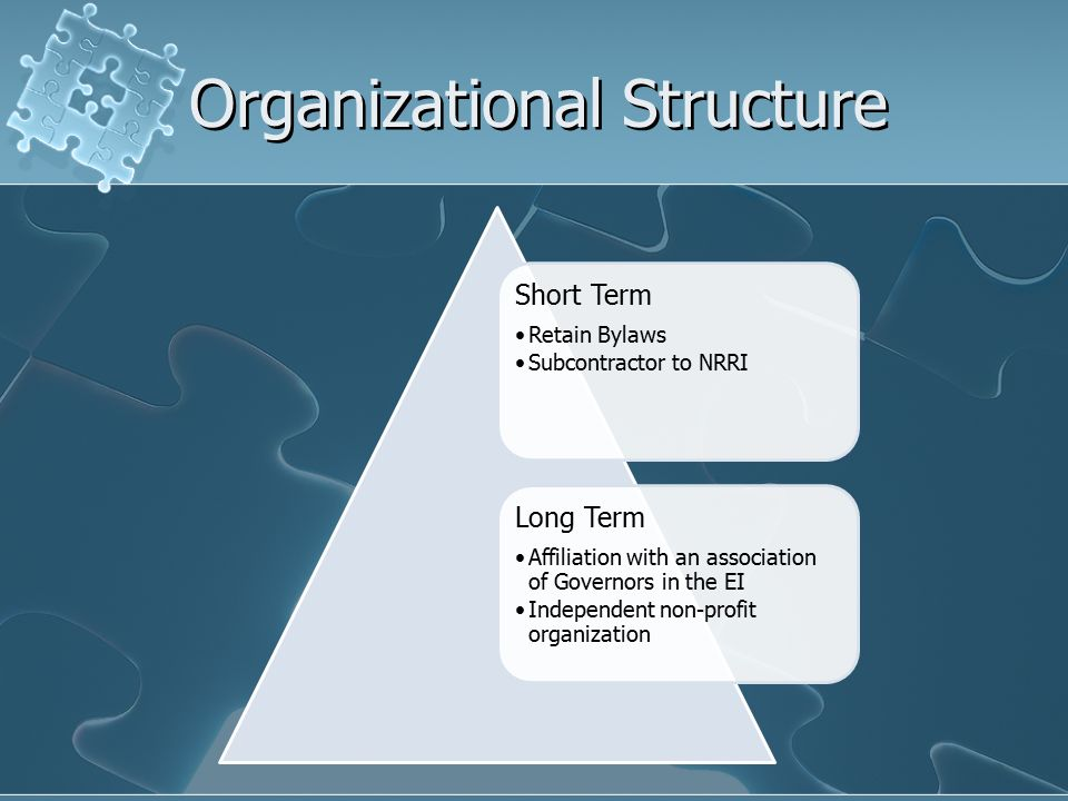 Organizational Structure Short Term Retain Bylaws Subcontractor to NRRI Long Term Affiliation with an association of Governors in the EI Independent non-profit organization