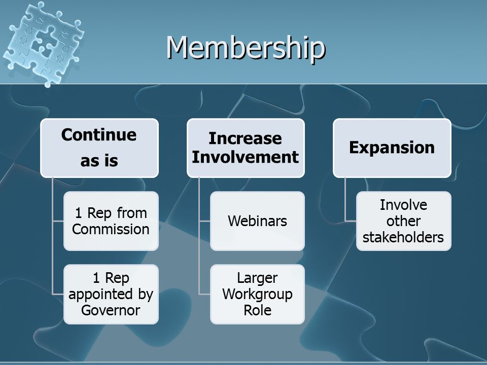 Membership Continue as is 1 Rep from Commission 1 Rep appointed by Governor Increase Involvement Webinars Larger Workgroup Role Expansion Involve other stakeholders
