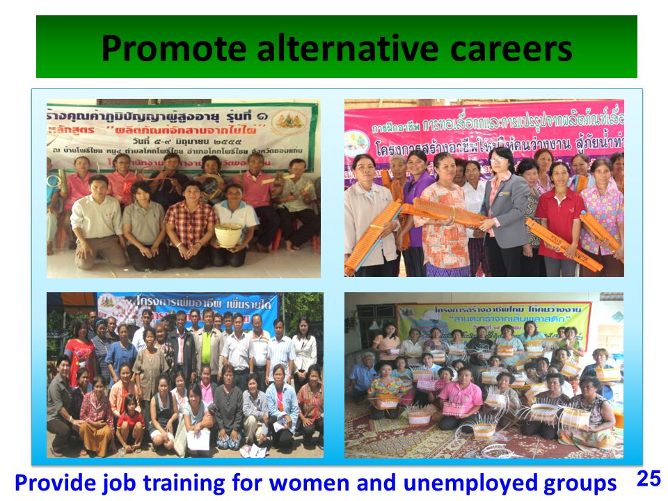Promote alternative careers 25 Provide job training for women and unemployed groups