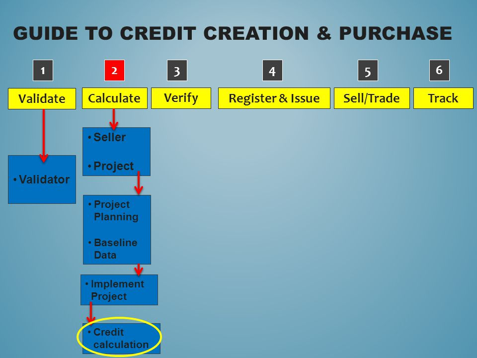GUIDE TO CREDIT CREATION & PURCHASE Validate Verify Calculate Sell/Trade Register & Issue Track Validator 1234 5 6 Project Planning Baseline Data Impl