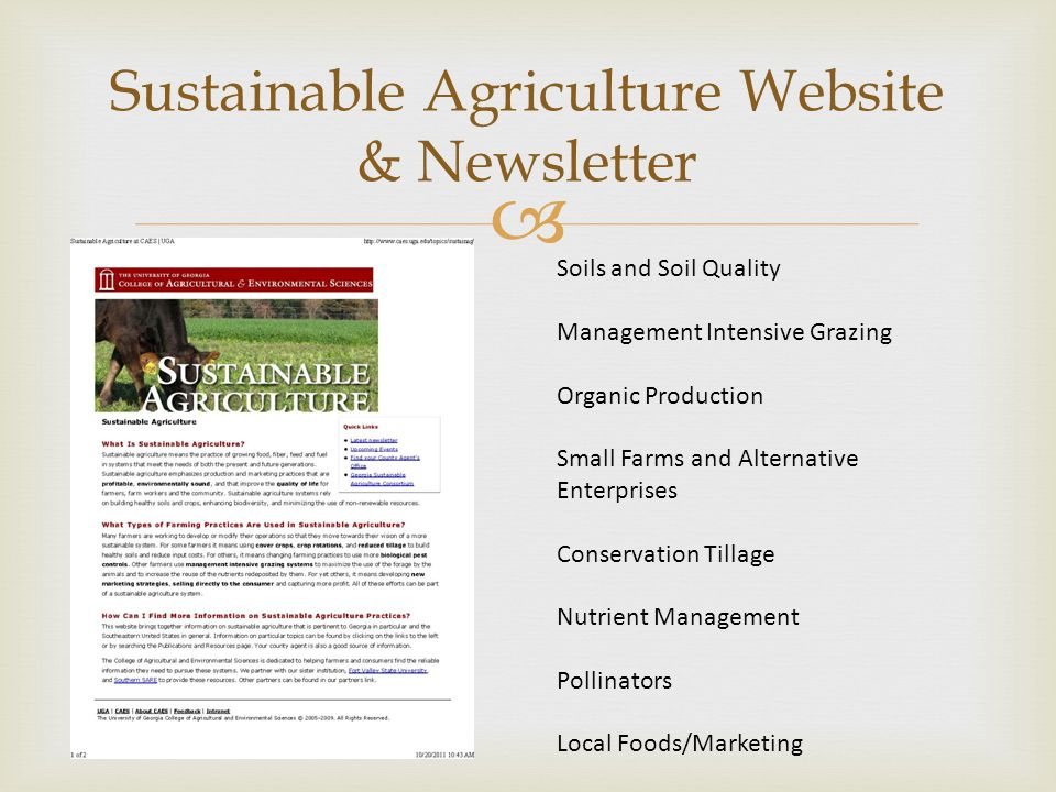  Organic Production Systems County agents receiving more questions about organic Extension not perceived as responsive to this clientele Obtained grant funding from Southern SARE to form Sustainable and Organic Production Team