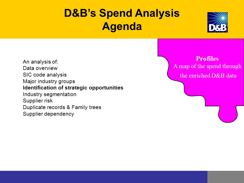 Profiles A map of the spend through the enriched D&B data D&B's Spend Analysis Agenda An analysis of: Data overview SIC code analysis Major industry g